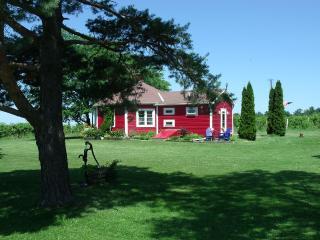Round Schoolhouse Respite - Hector vacation rentals
