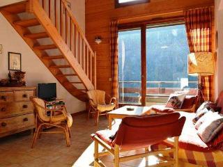 PLEIN SUD E 3 rooms + mezznanine 8 persons - Le Grand-Bornand vacation rentals