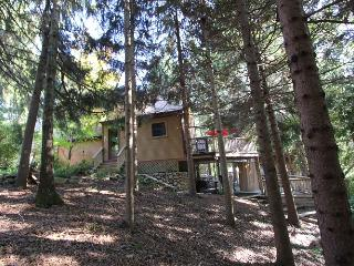 385 Wakeby Rd. - Marstons Mills vacation rentals