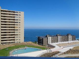 1 bedroom Apartment with Satellite Or Cable TV in Vina del Mar - Vina del Mar vacation rentals