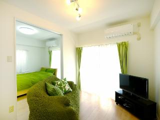 Newly renovated unit, 5 min from Shinjuku Station. - Nakano vacation rentals
