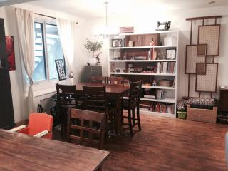 Nice and cosy apartment - PLATEAU - Montreal vacation rentals