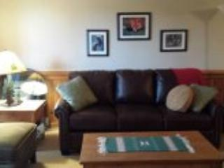 Luxury Condo Close to Slopes! - Angel Fire vacation rentals