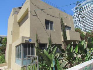 Villa on the sea front - Tel Aviv vacation rentals