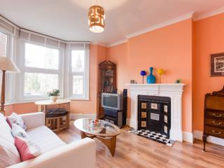 Lovely apartment in Islington, London - sleeps 1/2 - London vacation rentals