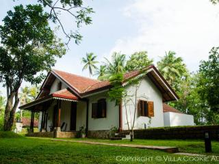 Sunny 3 bedroom Kosgoda Villa with Clothes Dryer - Kosgoda vacation rentals