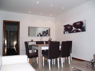 Cozy 3 bedroom Condo in Povoa de Varzim with Internet Access - Povoa de Varzim vacation rentals