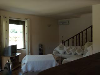 Large 3 Bed Villa with pool sleeps 8 - Osenovo vacation rentals
