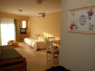 Nice Condo with Internet Access and A/C - Navarro vacation rentals
