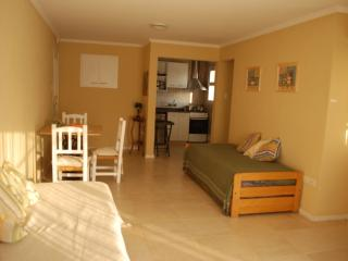 Nice Condo with Internet Access and A/C - Navarro vacation rentals