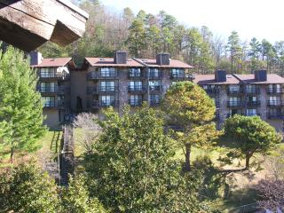 Fully equipped chalet style mountain Condo - Sevierville vacation rentals
