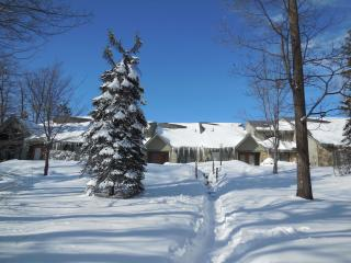 Nice 3 bedroom House in Hidden Valley - Hidden Valley vacation rentals