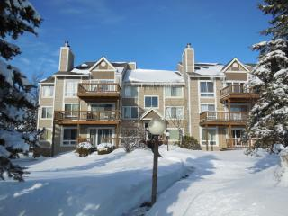 Cozy 2 bedroom Condo in Hidden Valley - Hidden Valley vacation rentals