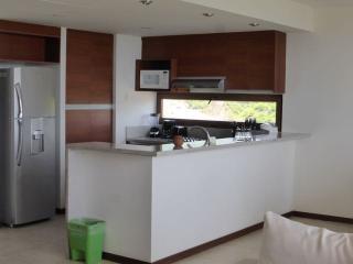 Dream Apartment in La Cruz de Huanacaxtle - La Cruz de Huanacaxtle vacation rentals