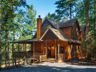 Perfect House with Hot Tub and Wireless Internet - Ellijay vacation rentals