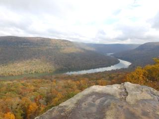 Tennessee River Gorge Island Cabin  $158 Weekdays - Chattanooga vacation rentals