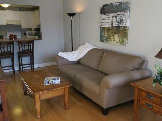Convenient 1 bedroom Condo in Halifax - Halifax vacation rentals
