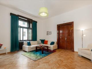 XINACTIVE.Pretty flat in heart of city center - Prague vacation rentals