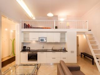 H2.Up to 10 people flat in CITY CENTER - Prague vacation rentals