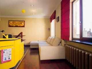Centre of Riga 1 bedroom studio type luxury apart. - Riga vacation rentals