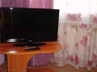 Romantic 1 bedroom Apartment in Novokuznetsk with Housekeeping Included - Novokuznetsk vacation rentals
