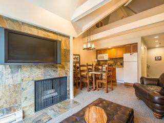 2BR/2BA Ski-In/Ski-Out w Slopeside Mountain View! - Park City vacation rentals
