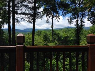 Private, Charming, Ellijay Cabin on 24 Acres - Ellijay vacation rentals