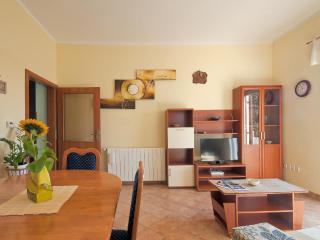 5200 A2(4+2) - Barban - Barban vacation rentals
