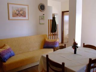2523 A2(2+2) - Petrcane - Petrcane vacation rentals