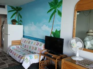 Beautiful 1 bedroom Condo in Hilo - Hilo vacation rentals
