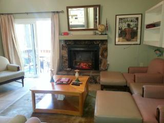 Lake Tahoe for Activity and Peace - Incline Village vacation rentals
