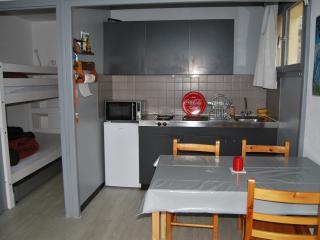 Cozy Saint-Lary-Soulan Studio rental with Television - Saint-Lary-Soulan vacation rentals