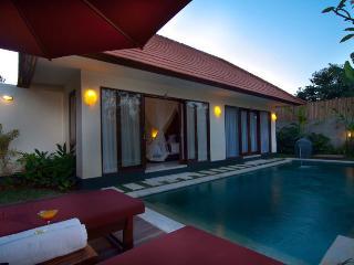 2 Bedroom Villa - 1 - Seminyak vacation rentals