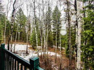 Peaceful w/ pool table, outdoor firepit, 10-min to town! - McCall vacation rentals