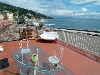 Paradiso: appartement with terrace on the port - Brando vacation rentals