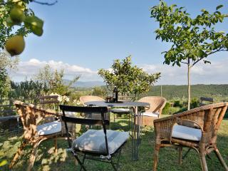 Nice Villa with Internet Access and Dishwasher - San Donato In Collina vacation rentals