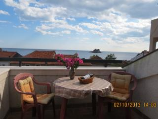 Vukovic 1/5 apartment - Petrovac vacation rentals