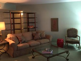 Perfect 2 bedroom Condo in Dallas with Internet Access - Dallas vacation rentals