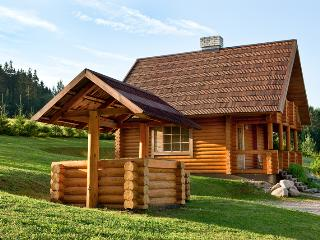 Nice House with Television and Sauna - Otepaa vacation rentals