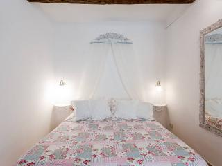 Trastevere flat,central economic and very romantic - Rome vacation rentals
