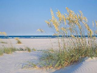 Shore Is Nice - Great oceanfront 3 bedroom duplex with plenty of parking - Carolina Beach vacation rentals