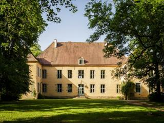 Spacious Chateau with Housekeeping Included and Television - Voudenay vacation rentals