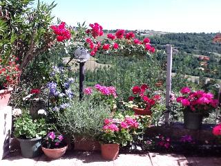 3 Bed House For Rent in Todi, Lorgnano Umbria - Loreto vacation rentals