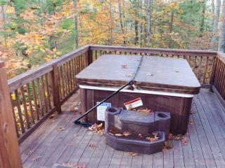 Surprise at Adventures on the Gorge - Lansing vacation rentals