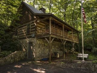 Perfect 2 bedroom Cabin in Todd - Todd vacation rentals