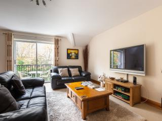 Lovely Condo with Internet Access and Satellite Or Cable TV - Belfast vacation rentals