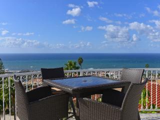 Panoramic Ocean View Estate - La Jolla vacation rentals