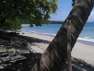Private Cabin 50 mt from the ocean - pvt beach - Cabuya vacation rentals