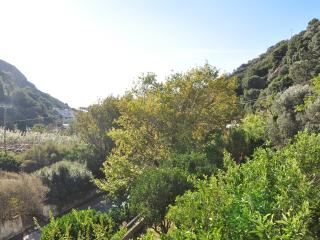 Vacation rentals in Ikaria