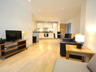Superior Two Bedroom London Apartment - London vacation rentals